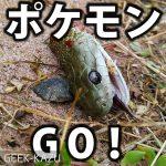 【ポケモンGO】ポケモンGOをしに散歩していたらリアルなアーボ(ヘビ)をゲットした話。(グロ注意)