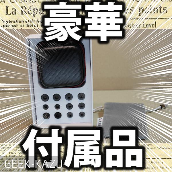 【イヤホン】付属品があまりにも豪華すぎる!高音質なカナル型・インイヤーヘッドフォン!