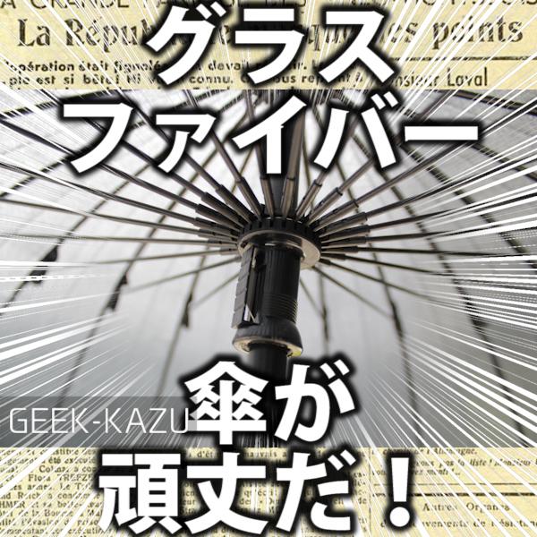 【丈夫な傘】24本のグラスファイバーが使われた超!しっかりとした傘!がすごすぎる!