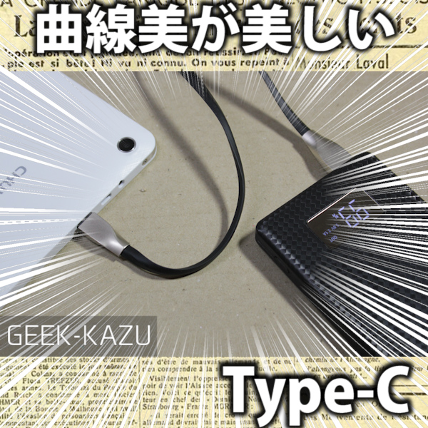 【USB Type-Cケーブル】曲線美が美しい、美術的センスを感じる充電/データ転送ケーブル