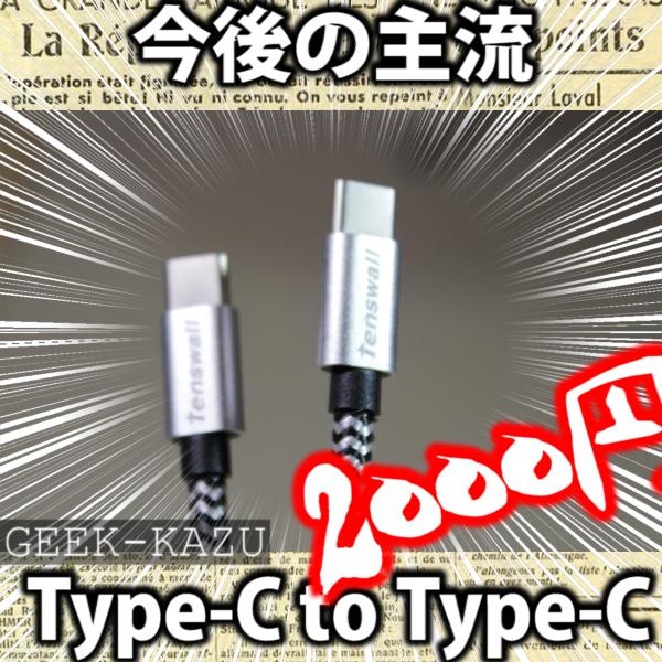 【Type-c to Type-C】案外貴重で、今後の主流。