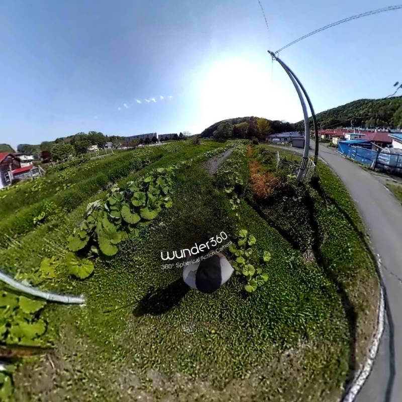 【Wunder360 C1 , 360度カメラ】撮影してみた編(写真サンプル)